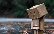 Hujan Lara